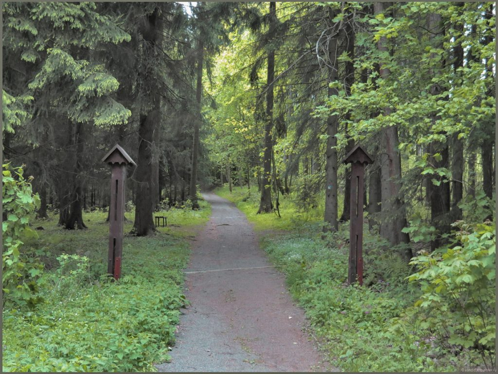 Уже не лес, но еще не парк. Близ Карловых Вар