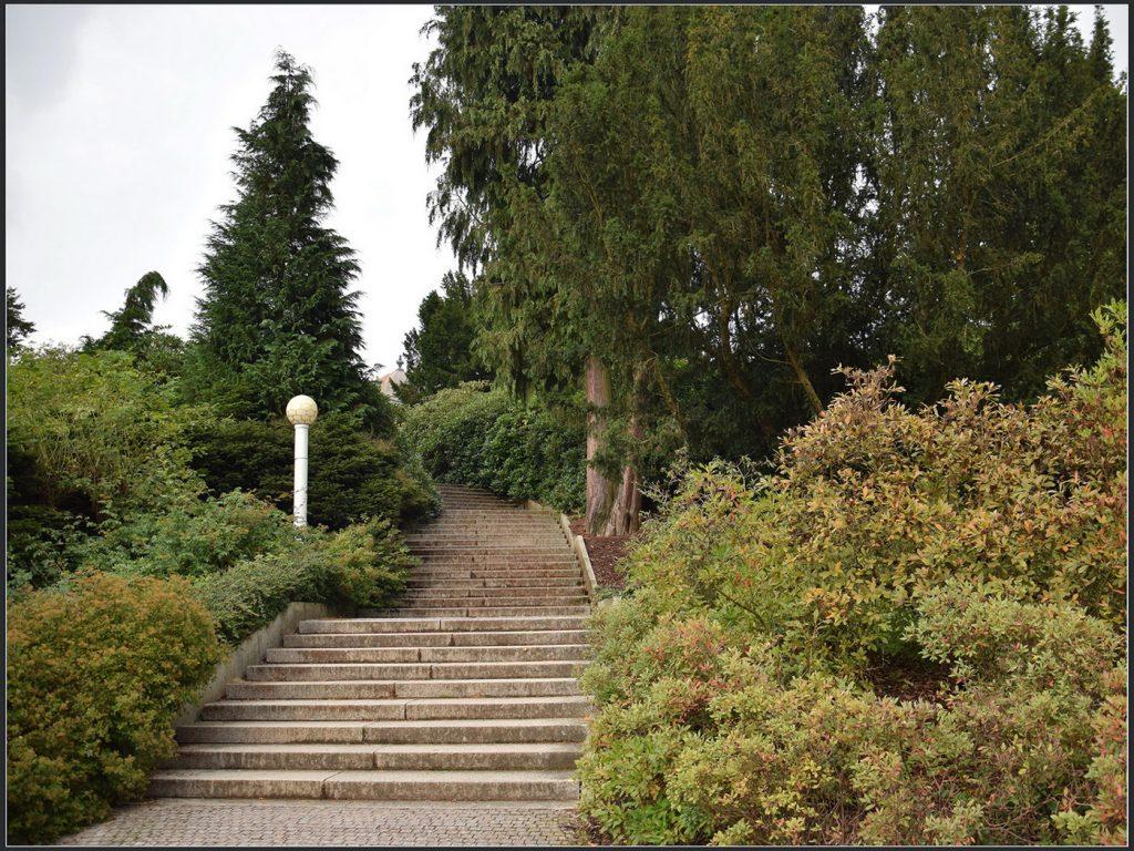 Вверх на смотровую площадку. Риегровы сады Рис. 18