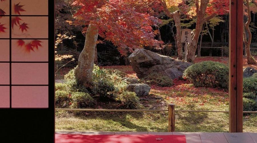 Привычные действия, которые ни за что не стоит совершать в Японии