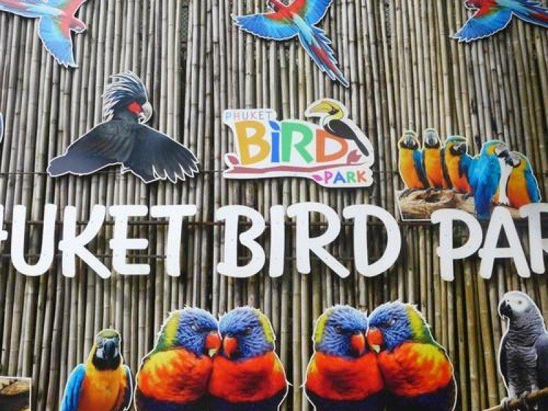 Экскурсии на Пхукете: цены и описание